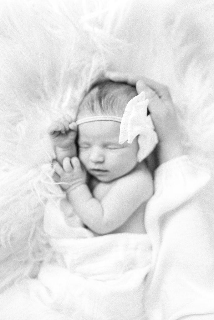 lincoln nebraska studio newborn photographer